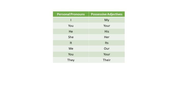 The Pretender5